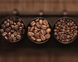 varietà_caffè